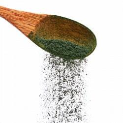 Spirulina Pulver aus Deutschland Dosiert mit einem Löffel - AKAL Food die Rohkost Spirulina