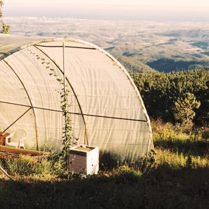 Überdachte Spirulina Farm in Europa